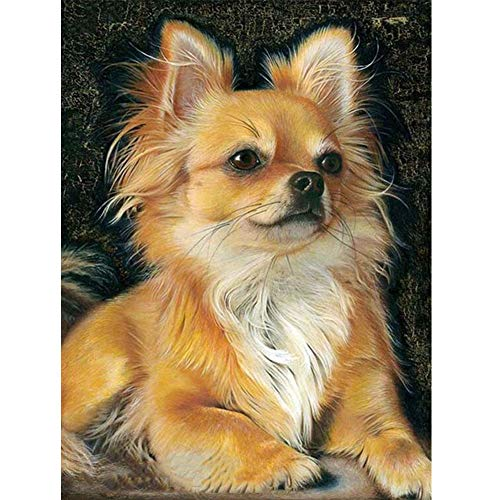 Diamond Painting Kits for Adults, Kids. Home Decoration, Room Office Yellow Dog 11.8x15.7in 1 Pack by Loxfir