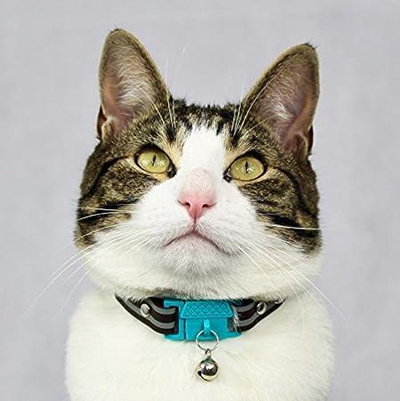 Galardonado Cat Friendly Collar para Gato Aqua de Kittyrama Visto en Vogue