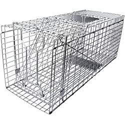 """Gingbau Humane Live Animal Trap Collapsible Cage for Cat, Rabbit, Large Squirrel, Opossum, Armadillo, Groundhog and Raccoon - 32"""" x 11"""" x 13"""""""