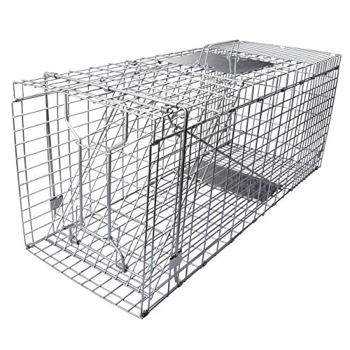 "Gingbau Humane Live Animal Trap Collapsible Cage for Cat, Rabbit, Large Squirrel, Opossum, Armadillo, Groundhog and Raccoon - 32"" x 11"" x 13"""