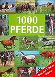 img - for 1000 Pferde-Rassen von A-Z, Haltung, Reitkunst book / textbook / text book