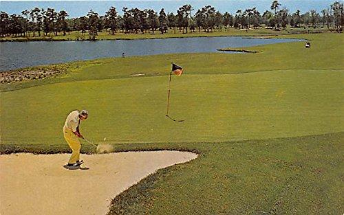 Professional Jimmy D'Angel, Dunes Golf & Beach Club Myrtle Beach, South Carolina, SC, USA Old Vintage Golf Postcard Post Card ()