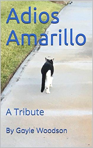 Adios Amarillo: A Tribute