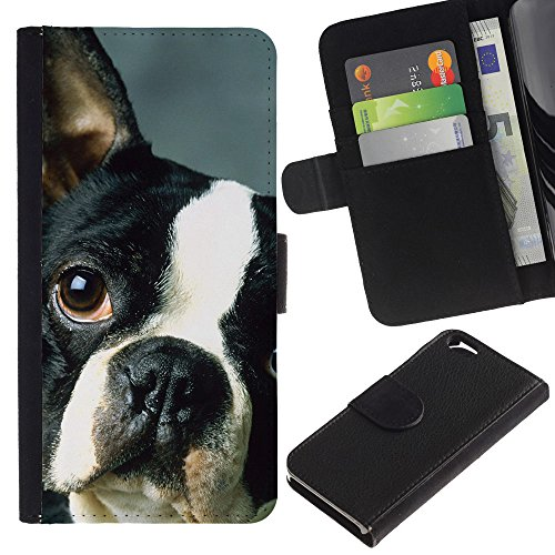 EuroCase - Apple Iphone 6 4.7 - French bulldog Boston bull terrier dog - Cuir PU Coverture Shell Armure Coque Coq Cas Etui Housse Case Cover