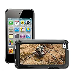 Hot Style Cell Phone PC Hard Case Cover // M00046620 insects animals insect photography // Apple iPod Touch 4 4G 4th