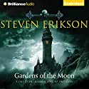 Gardens of the Moon: The Malazan Book of the Fallen, Book 1 Audiobook by Steven Erikson Narrated by Ralph Lister