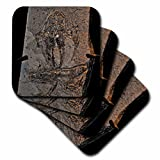 3dRose cst_16708_3 Pueyoi Frog Fossil from The Miocen Libros, Teruel, Aragon, Spain-Ceramic Tile Coasters, Set of 4