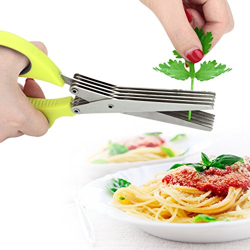 Besiva Herb Scissors Stainless Steel,Multipurpose Kitchen Shear with 5 Blades with Cleaning Brush (Onion green)
