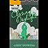 Chasing Daylight (Carolina Days Book 3)
