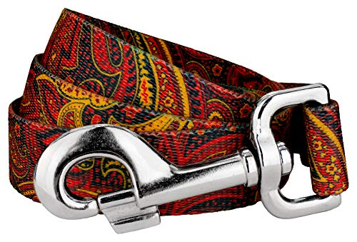 Country Brook Design | 1 Inch Fire Paisley Dog Leash - 6 Foot