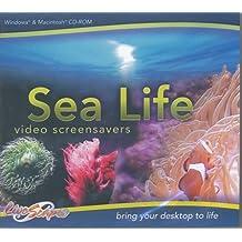 Sea Life Video Screensavers