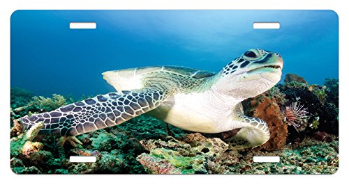 Reef License Plate - Ambesonne Turtle License Plate, Photo of Green Turtle and Lion Fish on Tropical Coral Reef Chelonia Snorkeling, High Gloss Aluminum Novelty Plate, 5.88