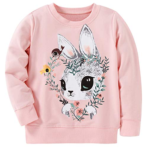 AuroraBaby Toddler Little Girls Sweatshirts Kids Pullover Adorable Long Sleeve Pink Size 6t ()
