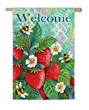 Evergreen Suede Strawberry Bees Estate Flag, 36 by 52 inches For Sale