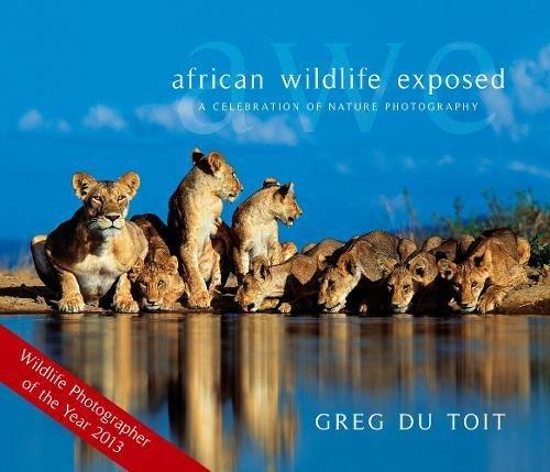 African Wildlife Exposed