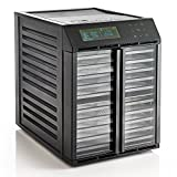 Excalibur RES10 10 Tray Dehydrator With Digital Controller, Black