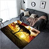 Vanfan Design Home Decorative Africa Sunset Modern Non-Slip Doormats Carpet for Living Dining Room Bedroom Hallway Office Easy Clean Footcloth