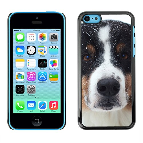 Premio Sottile Slim Cassa Custodia Case Cover Shell // F00012902 chien // Apple iPhone 5C