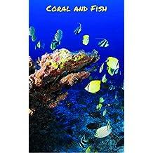 Coral And Fish: Beautiful