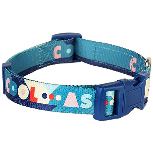 """Blueberry Pet Naughty Boy Artistic Sapphire Basic Dog Collar, Neck 12""""-16"""", Small, Collars for Dogs"""