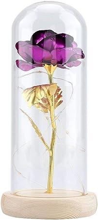 La flor rosa puede durar para siempre sin marchitarse y desvanecerse después de un tratamiento espec