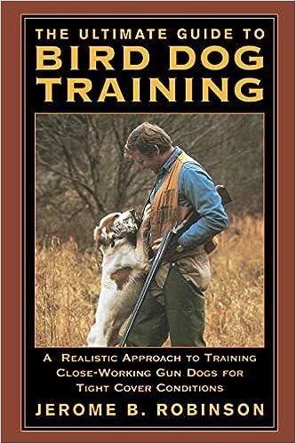 Traing the Ultimate Bird Dog