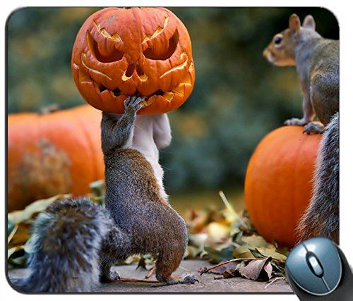 Halloween Squirrels Pumpkin mask 97728 Personalized Rectangle Mouse Pad, Printed Non-Slip Rubber Comfortable Customized Computer Mouse Pad Mouse Mat Mousepad -