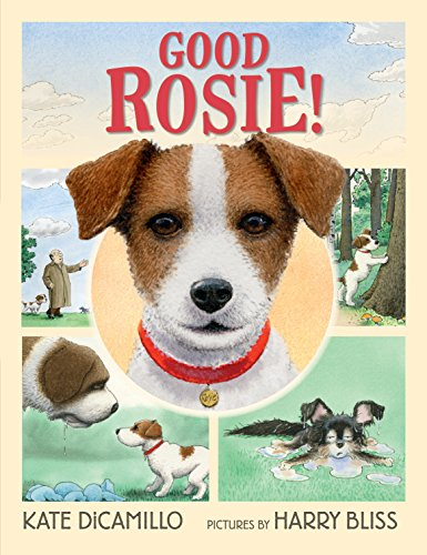 Book Cover: Good Rosie!