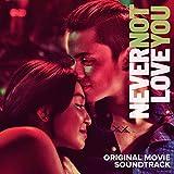 Never Not Love You (Original Movie Soundtrack)