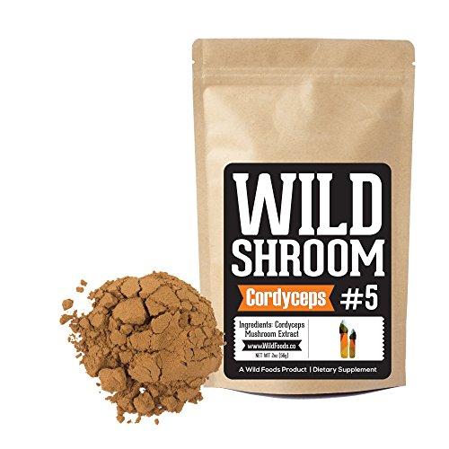 Cordyceps Mushroom Extract Powder 10:1 by Wild Foods | Cultivated Sinensis on Mycelium, Triple Water Extracted Adaptogenic Nootropic Herb | Performance, Libido, Immune Function and Focus (2 (Cordyceps Sinensis Mushroom)