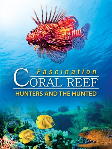 ef - Hunters & The Hunted (Colored Reef)
