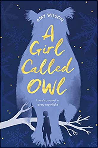 Image result for A Girl Called Owl