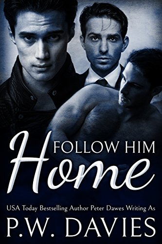 Follow Him Home: an mmm romance with a doctor, a lawyer, and a hitman (Alternate Worlds Book 1)