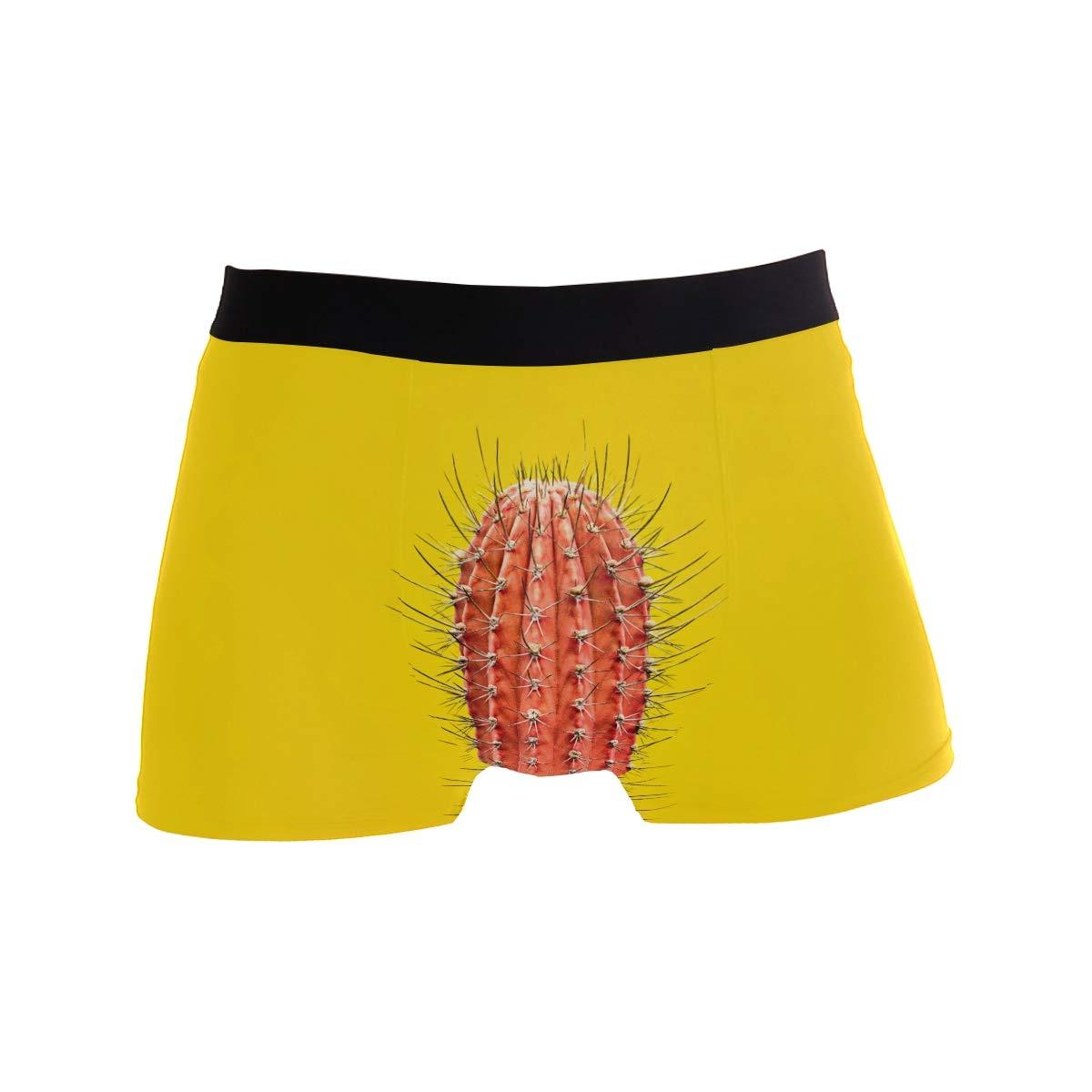 Multi ZZKKO Mens Fashion Big Cactus Mens Underwear Boxer Briefs Breathable
