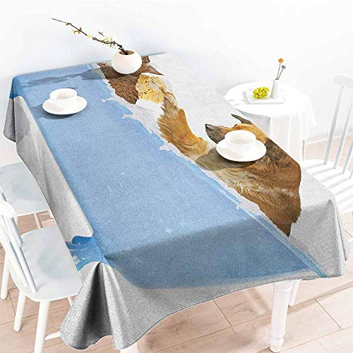 EwaskyOnline Spill-Proof Table Cover,Cat Dog and Kitty in The Bathtub Together with Bubbles Shampooing Having Shower Fun Artsy Print,Table Cover for Kitchen Dinning Tabletop Decoratio,W60X102L, Multi