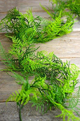 6 Ft Artifical Asparagus Fern Garland