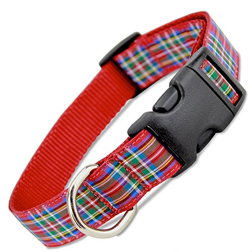Collars Terrier Scottish (The Artful Canine Scottish Plaid Dog Collar, Royal Stewart Tartan, Medium Dogs, 22-35 lbs (Collar: 3/4