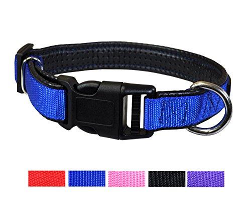 Plastic Quick Release Collar Medium