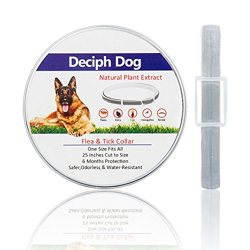 Deciph Flea and Tick Prevention for Dogs | Flea Collar for Dogs | One Size Fits All | Softer, Reassuring, Odorless and Water-Resistant | 25 Inches Cut to Size | 6-Month Protection