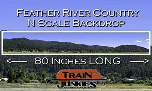 Train Junkies Feather River - Railroad Backdrop N Scale for sale  Delivered anywhere in USA