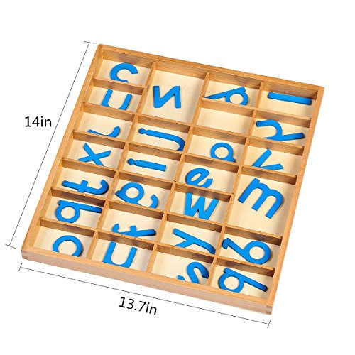 EOFEEL Montessori small Wooden Movable Alphabet with Box for Early Preschool Learning Toy(Blue) by EOFEEL (Image #2)