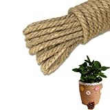 KSPOWWIN Jute Twine String Arts and Crafts Jute Rope Industrial Packing Materials Packing String For DIY Crafts, Festive Decoration and Gardening Applications, 4mm, 3 Ply, Brown