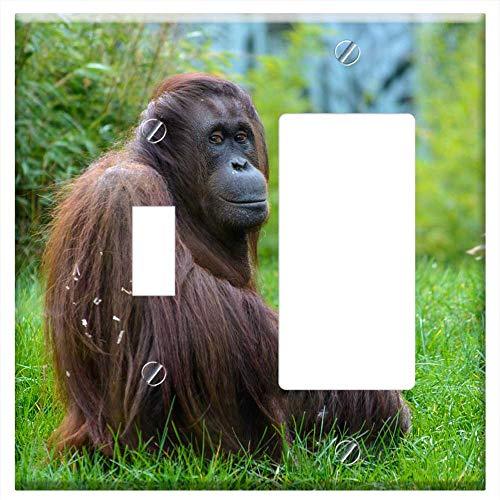 1-Toggle 1-Rocker/GFCI Combination Wall Plate Cover - Animal Monkey Zoo Monkey Portrait Orang-Utan ()