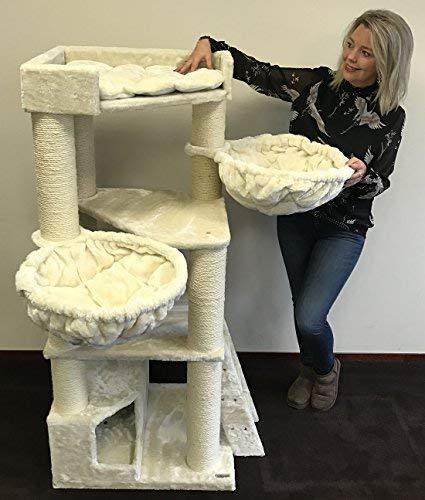 Tiragraffi per gatti grandi xxl Corner Coon Crema maine coon robusto adulti grande gatto albero enormi giganti XL