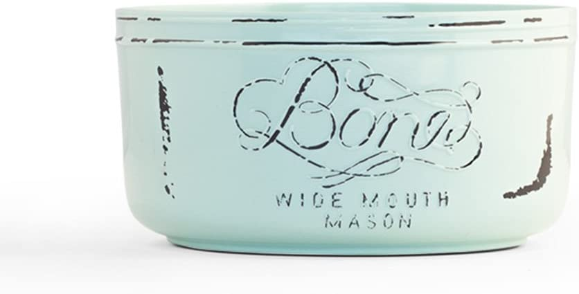 Pet Champion 32 oz Vintage Mason Jar Melamine Feeding Bowl, Teal, Medium