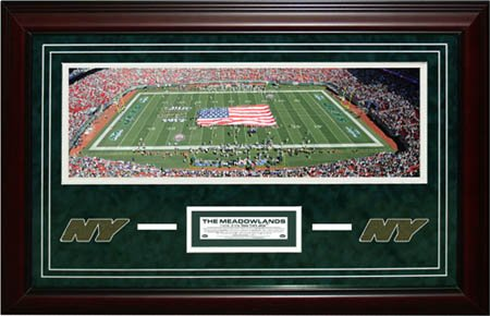 New York Jets Meadowlands Giants Stadium Photo w/ Meadowlands Grass-21x32