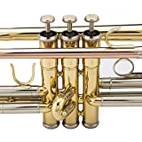 Jean Paul USA Trumpet - Standard, Brass