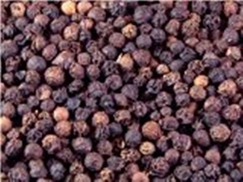 OliveNation Tellicherry Peppercorns 16 oz.