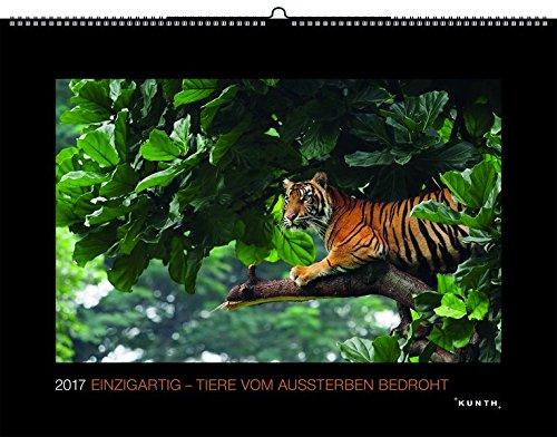 2017 Einzigartig - Tiere vom Aussterben bedroht: Schwarz, Großformat (KUNTH Wandkalender Black Edition)