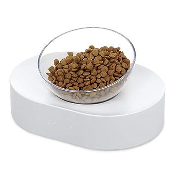 YUMUYMEY Tazón de Fuente Transparente de la Comida con el alimentador Antideslizante inclinable del Soporte de